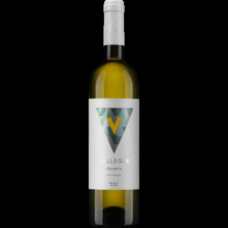 Vallegre Branco 2017-31