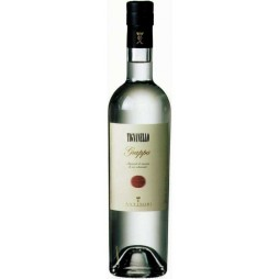 Antinori, Tignanello Grappa