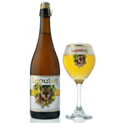 Brasserie Lupulus, Lupulus Blonde