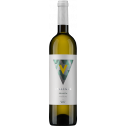 Vallegre Branco 2017-20