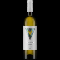 VallegreBranco2017-20